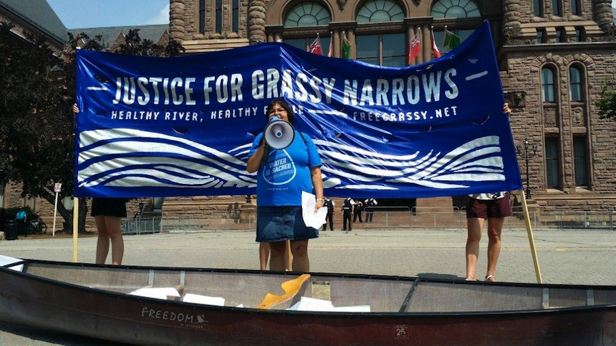 Support for Grassy Narrows in Toronto on July 7