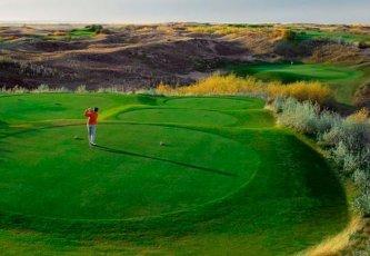 Gold Dakota Dunes